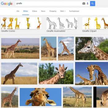 Auf Google findet ihr schnell hübsche und süße Giraffen für eurer Profilbild!