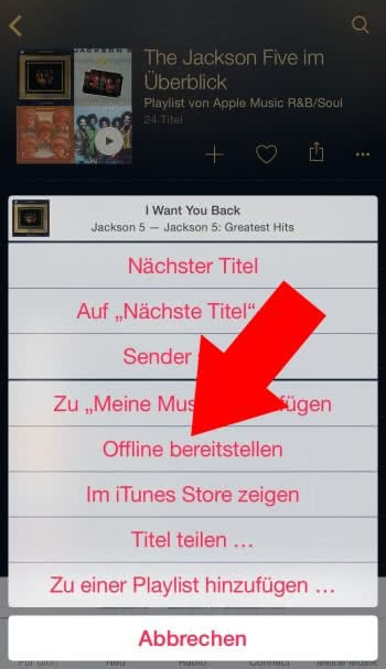Songs offline bereitstellen