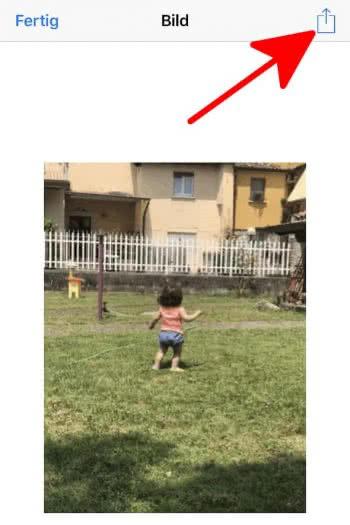 Teilen-Button drücken, um GIF zu teilen
