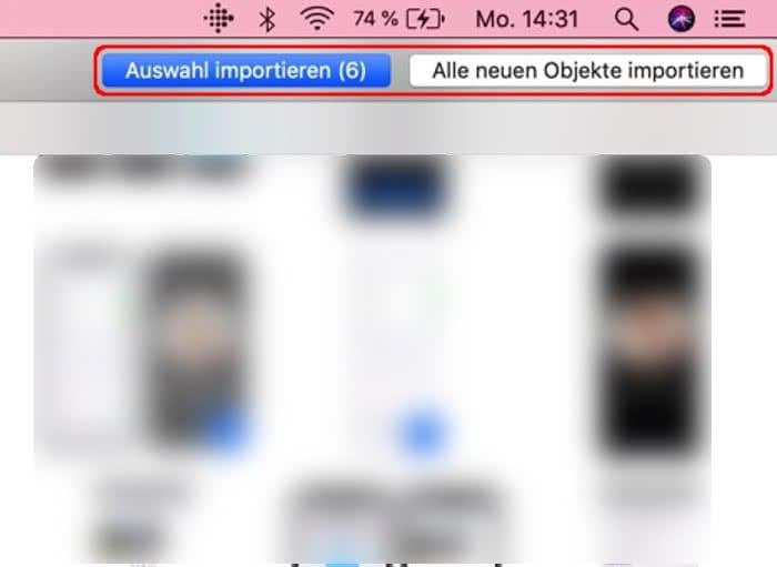 Auswahl importieren oder alle neuen Objekte in die Fotos-App importieren