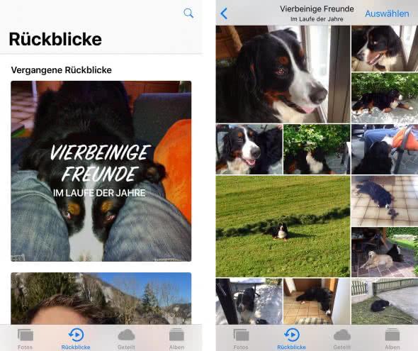 Neu ab iOS 11: Rückblicke zu Tieren, Kindern, usw.