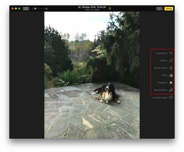 Live Photo in Fotos App am Mac bearbeiten