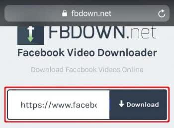 """Video-Link auf der FBDOWN.net Webseite einsetzen und auf """"Download"""" tippen"""