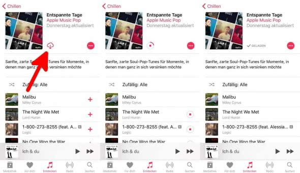 Gesamte Playlists herunterladen 2