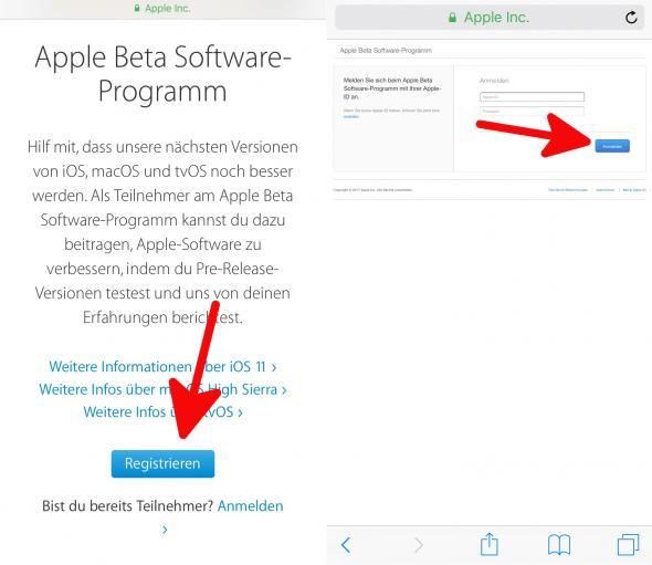 Beta Apple 1