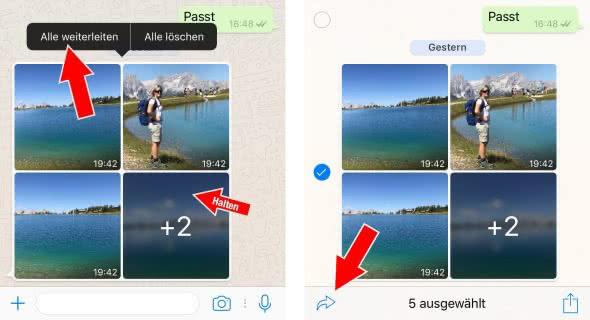 Fotoalben in WhatsApp weiterleiten