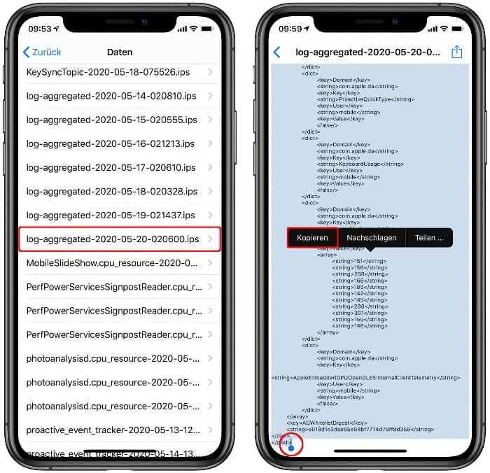 """Den Eintrag """"log-aggregated"""" auswählen und Text markieren und kopieren"""