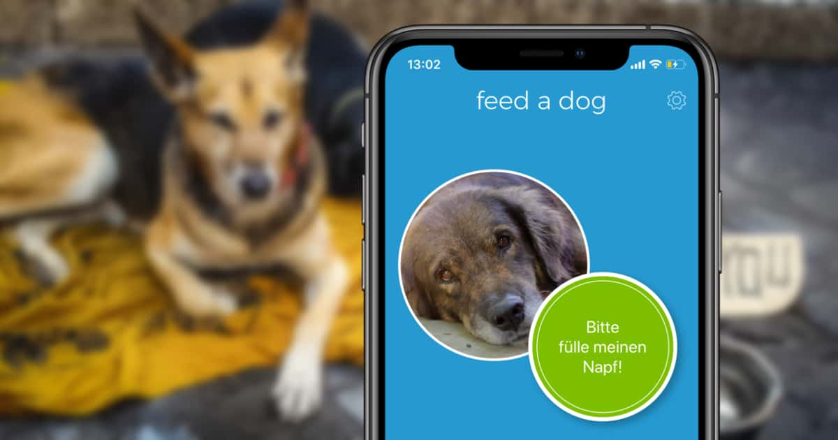 Feed a dog App auf dem iPhone
