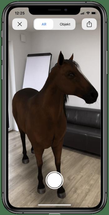3D Tiere fotografieren